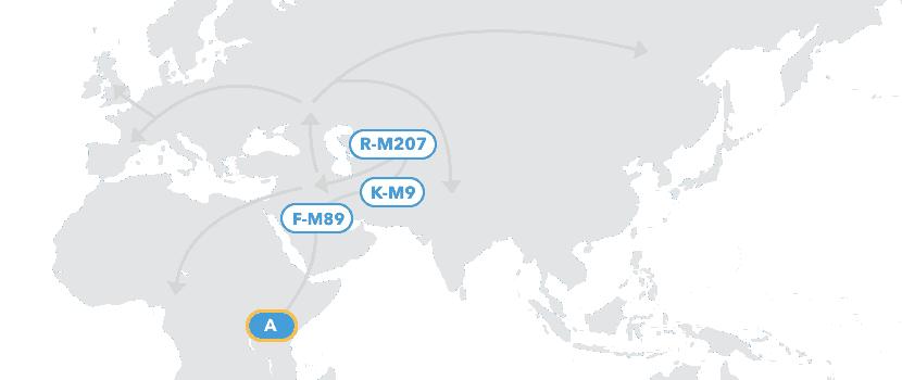 ydna haplogroup map
